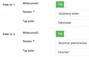 Zrzut ekranu prezentujący formularz zarządzania polami dodatkowymi.